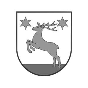 Gmina Łysomice image