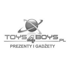 Toys 4 Boys image